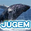 【レビュー】JUGEMブログのスマホ版をカスタマイズしたのでフリースペースの使用方法などをご紹介
